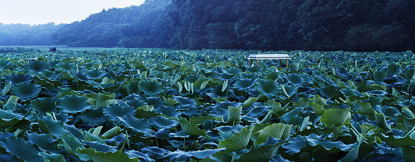 日本ハム「シャウエッセン2012」10-10